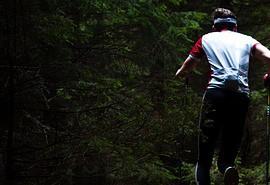 znaczenie snu Bieganie po lesie