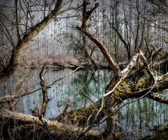 znaczenie snu Jezioro